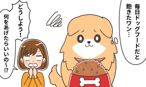 ドッグフード以外に、愛犬に食べさせて良いもの・悪いもの