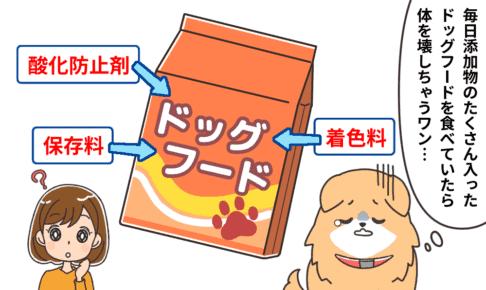 恐ろしいドッグフードの添加物一覧