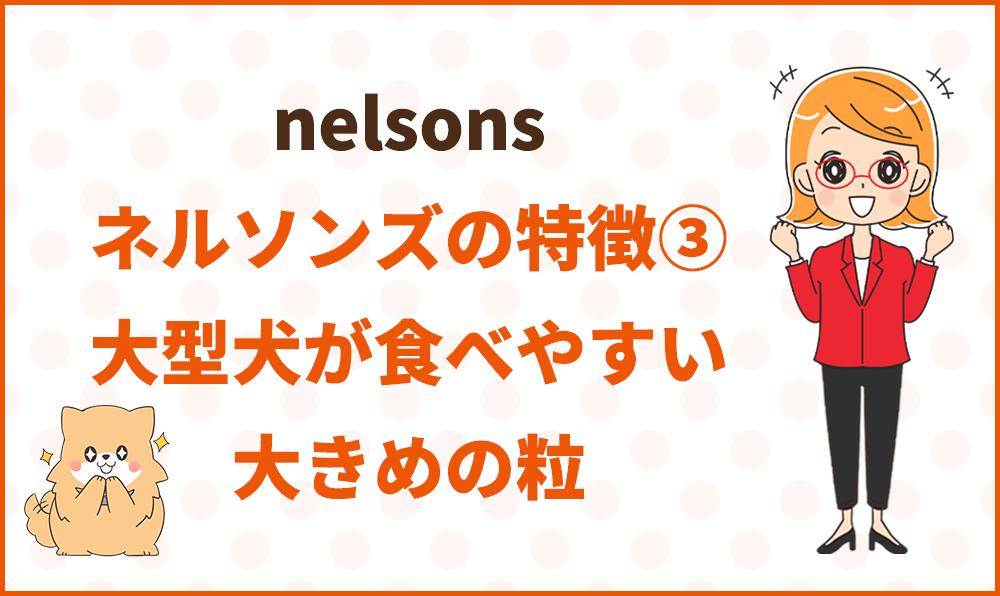 ネルソンズの開発裏話
